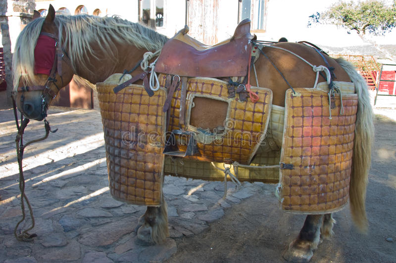 Lancer horse equipment. Equipment of lancer horse for bullfight day in order to select animals for breed braves fighting bulls stock image
