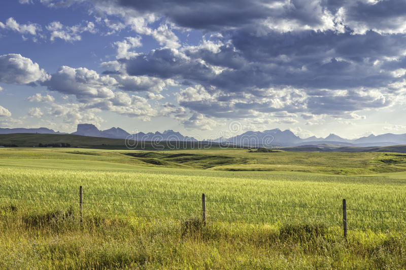 Download Land against mountains stock photo. Image of mountain - 31774962
