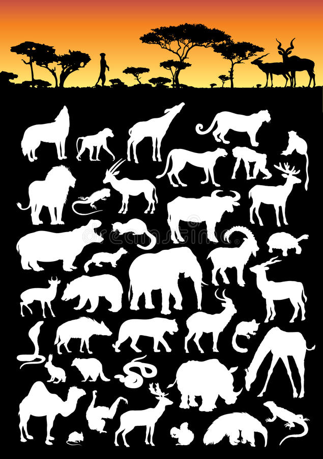 Download Land Animal Collection stock vector. Illustration of eater - 9564321