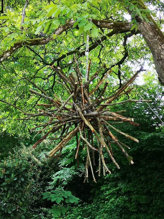 Land art branches. Wooden branches land art in a tree, symbol teamwork, Holzstern, Holzäste als Landart Objekt, Symbol für Teamwork und Zusammenhalt stock images