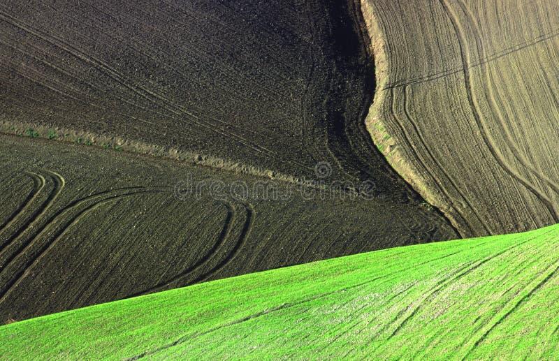 Land background royalty free stock image