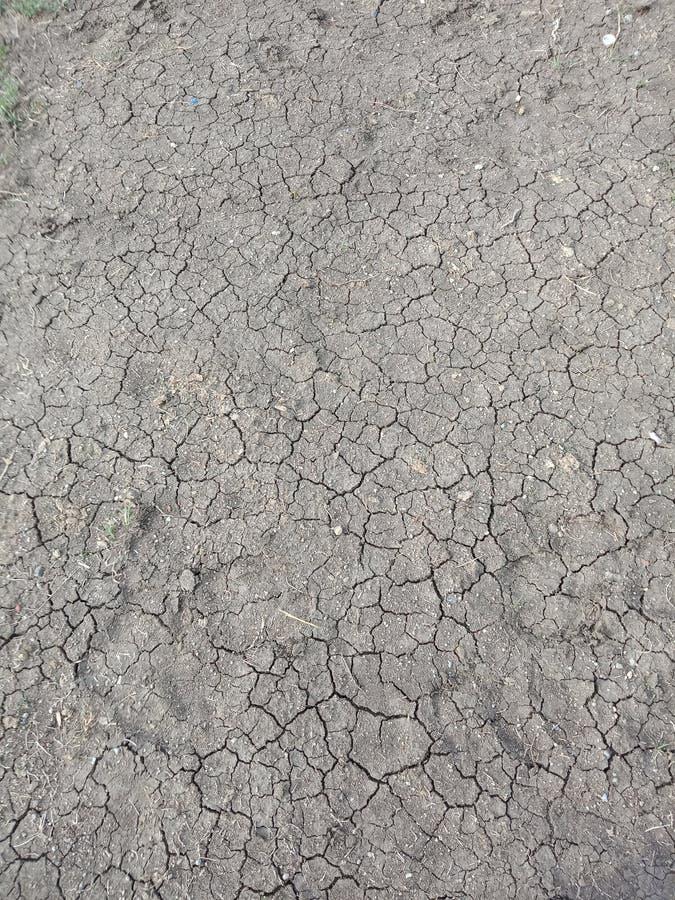 Land bereit zum Ernten in Indien zu den Landwirten nach Regen stockfoto