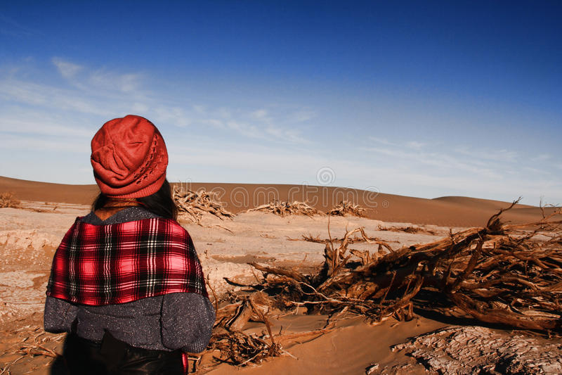 Land desertification. The trees on the edge of the desert to die stock image