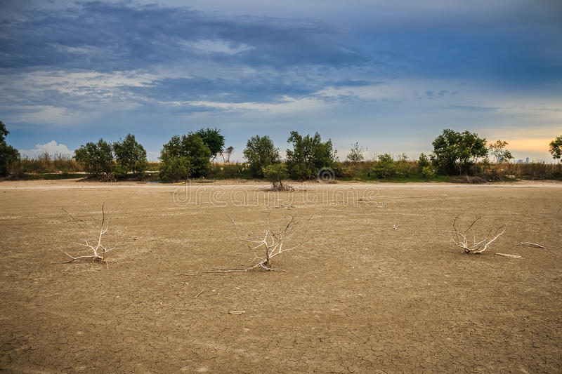 Land with dry and cracked ground. Desert. General illustration royalty free stock photos