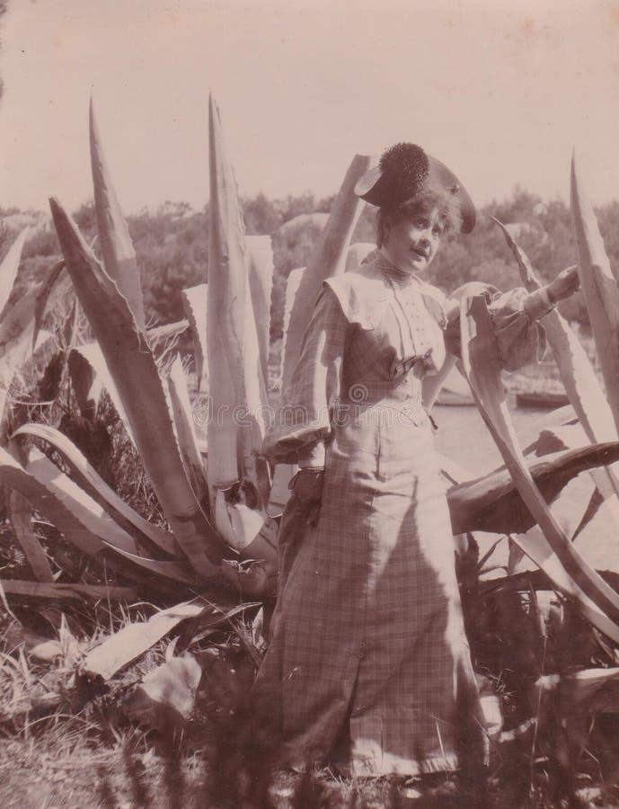 LAND DT00048 MEDITERRANIAN - CIRCA 1910 - FRAU, die mit enormer Agave aufwirft lizenzfreie stockfotos