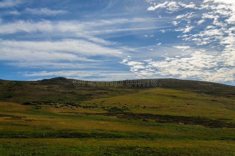 Land en Cloudscape stock foto's
