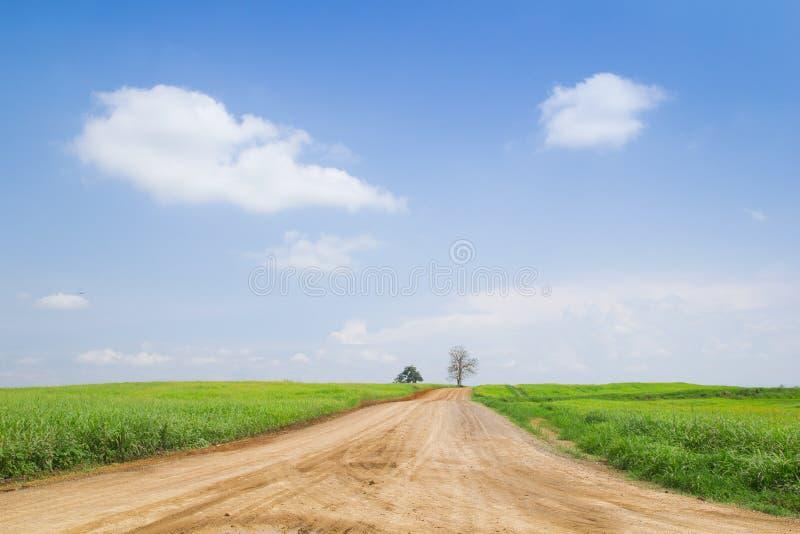 Land Meadowns im Himmel lizenzfreies stockbild