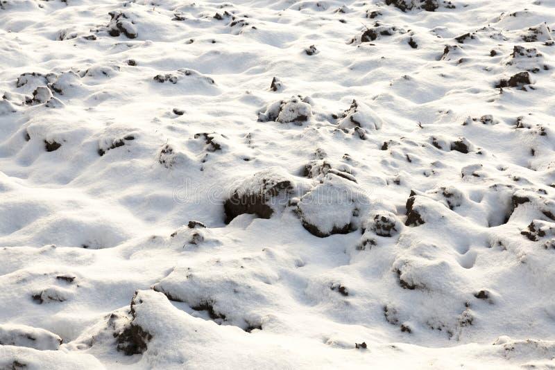 land met sneeuw, close-up wordt behandeld dat stock fotografie