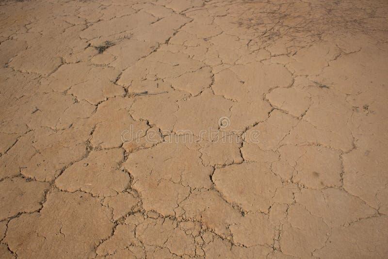 Land mit trockenem gebrochenem Boden nach Hitzewelle lizenzfreies stockfoto