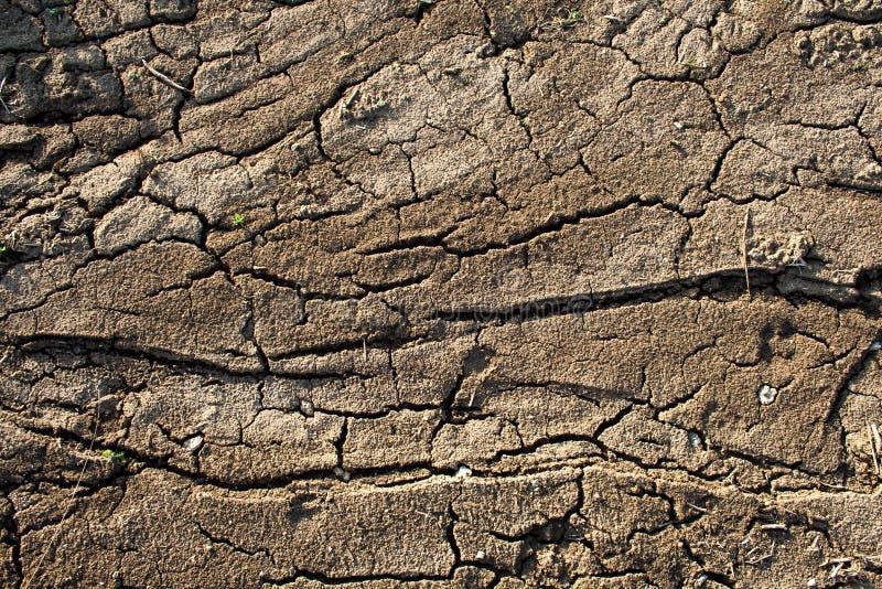 Land mit trockenem und gebrochenem Boden lizenzfreie stockfotos