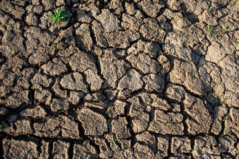 Land mit trockenem und gebrochenem Boden stockfoto