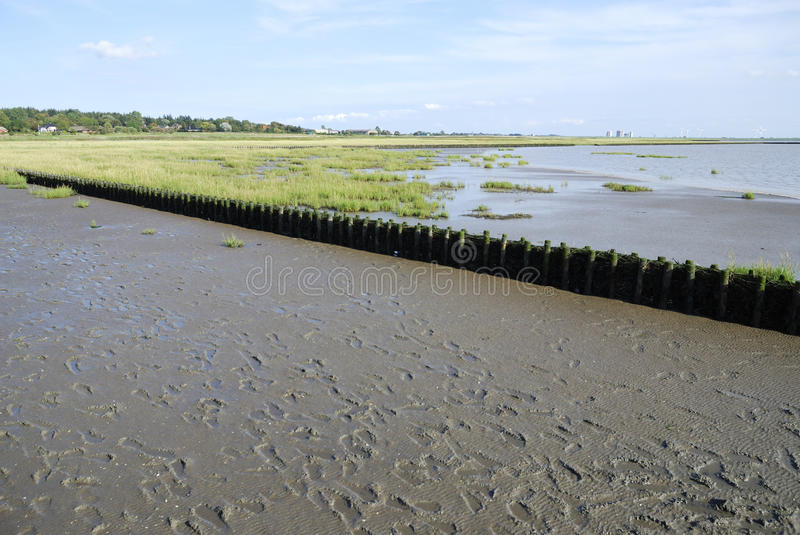 Land reclamation. In the Wadden Sea (Schobüll, Germany royalty free stock photo