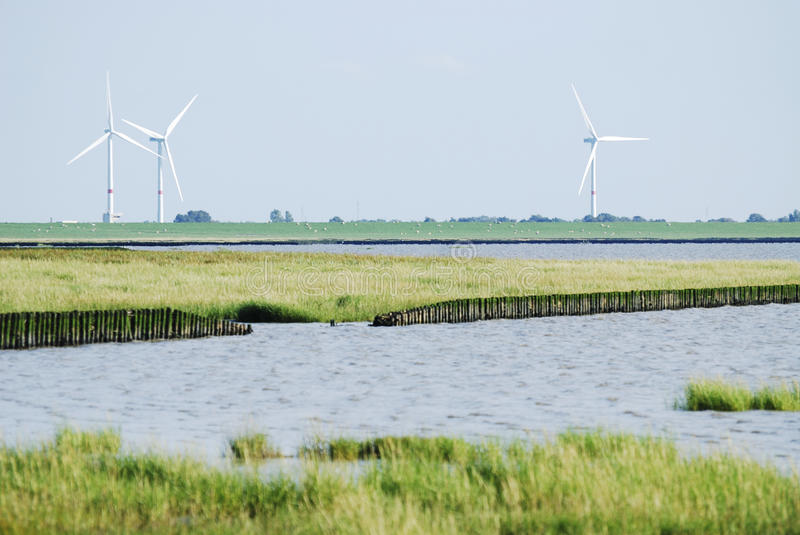 Land reclamation. In the Wadden Sea (Schobüll, Germany stock photography
