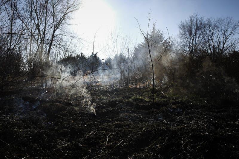 Land som göras klar av borste av brand fotografering för bildbyråer