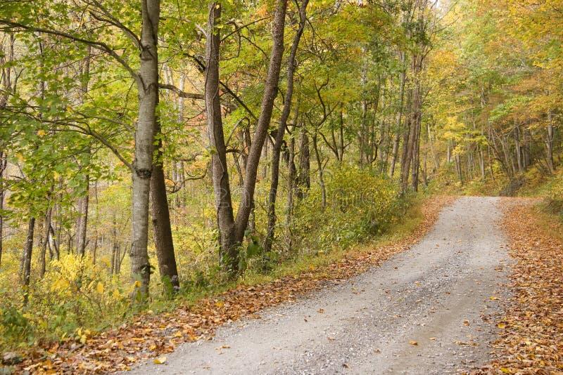 Land-Straße im Herbst lizenzfreie stockbilder
