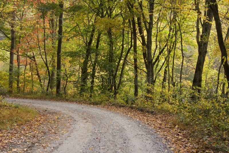 Land-Straße im Herbst stockfotos