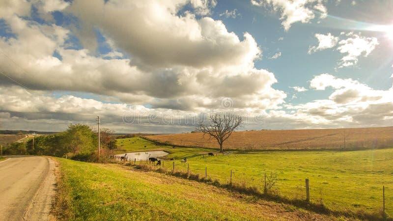 Land-Straße mit Ackerland und bewölkten Himmeln lizenzfreies stockbild