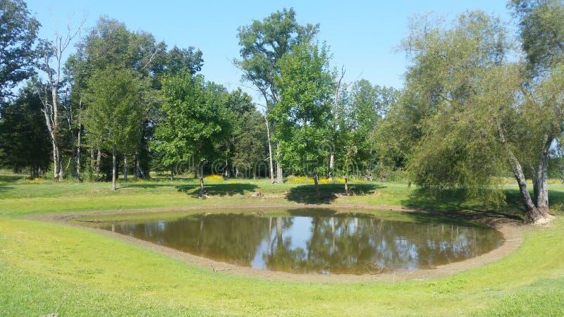 Land-Teich stockbilder