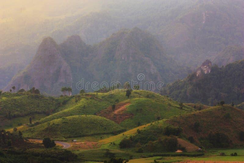 Land in Thailand royalty-vrije stock foto's