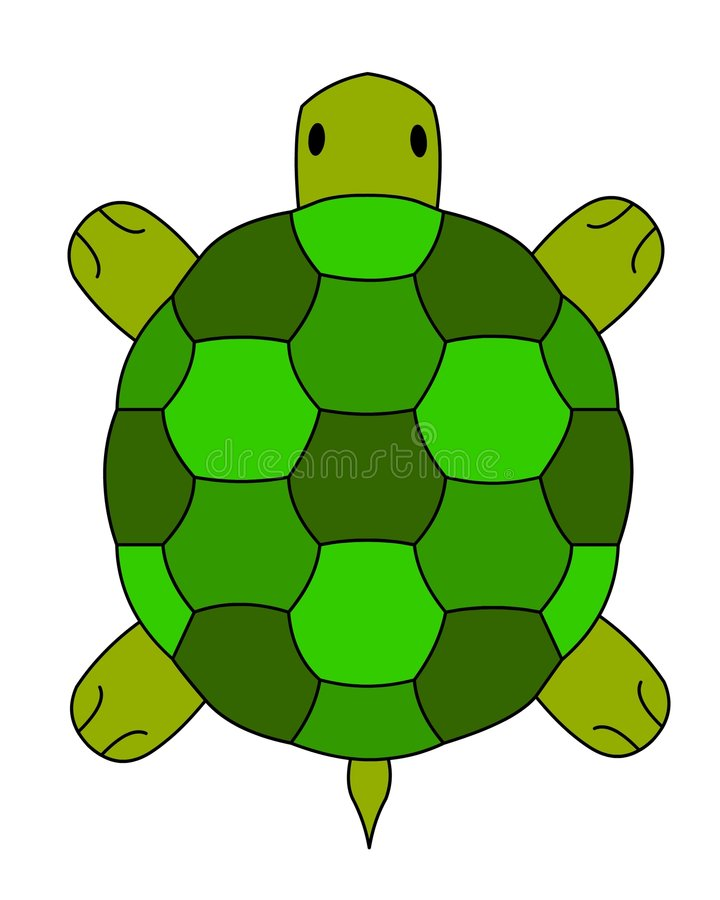 Land turtle illustration. Land turtle, a vector illustration stock illustration