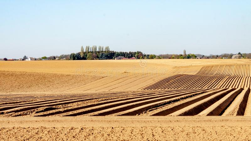 Land worked with furrows in line for the cultivation of potatoes. Wonderful sunny day in a farm field in Oensel south Limburg in the Netherlands Holland stock photography