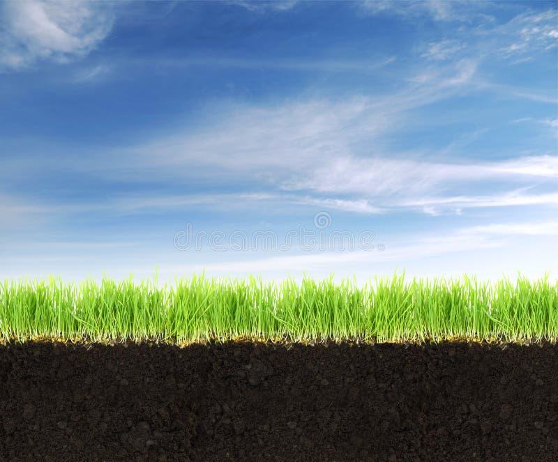 Landa med jord, gräs och blå himmel. royaltyfri fotografi