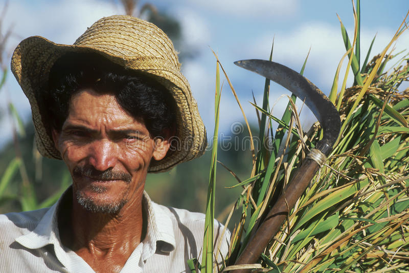 Landarbeiter, Brasilien lizenzfreie stockfotografie
