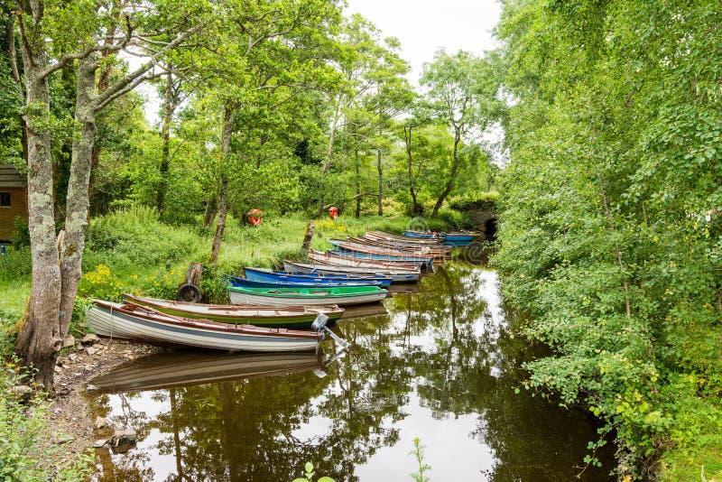 Landascapes της Ιρλανδίας Εθνικό πάρκο Killarney στοκ φωτογραφία