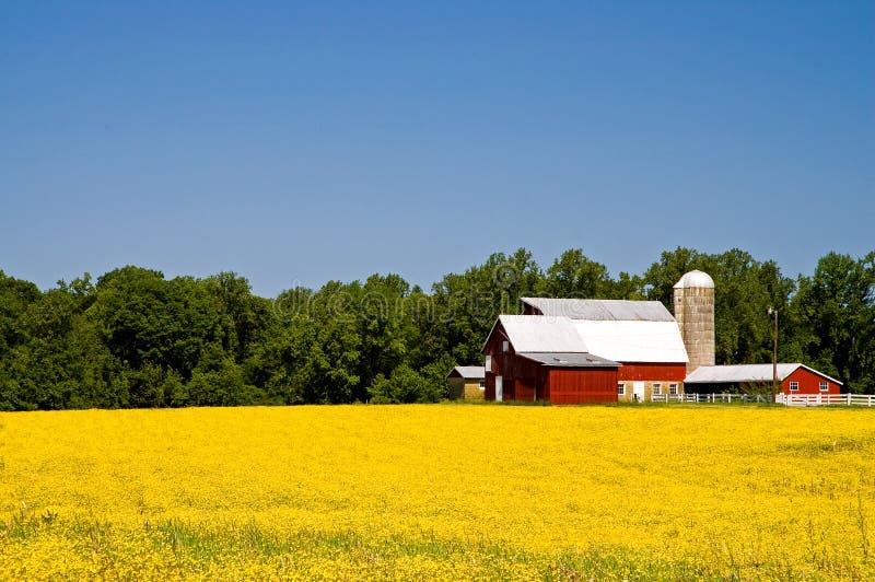 Landbauernhof im Frühjahr lizenzfreie stockfotos
