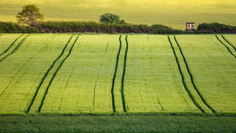 Landbouw in Duitsland royalty-vrije stock fotografie