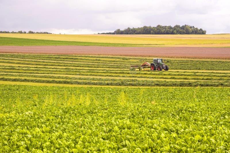 Landbouw in Frankrijk royalty-vrije stock fotografie