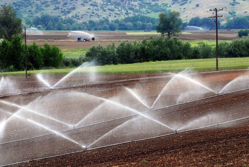 Landbouw irrigatieniveaus stock afbeeldingen