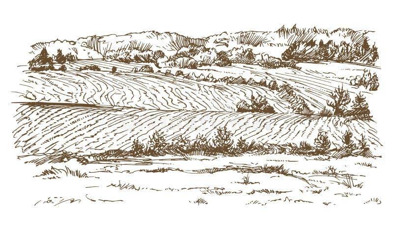 Landbouw landschap Weiden en gebieden stock illustratie