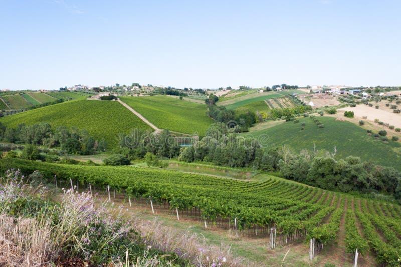 Landbouw, mening van de gebieden en de landbouwbedrijven in Italië stock afbeeldingen