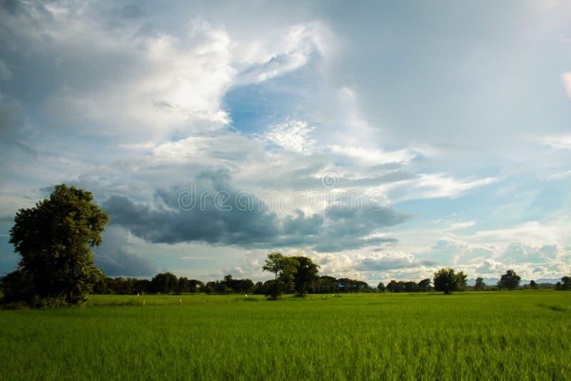 Landbouwbedrijf royalty-vrije stock foto