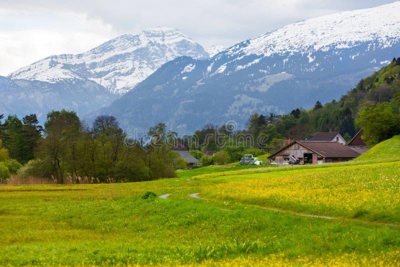 Landbouwbedrijf bij de lente in Zwitserland royalty-vrije stock afbeeldingen