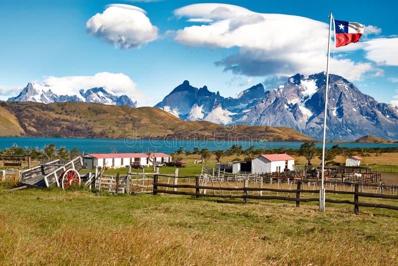 Landbouwbedrijf in Chili stock foto