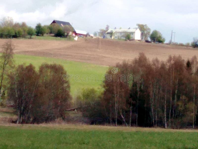 Landbouwbedrijf stock afbeeldingen