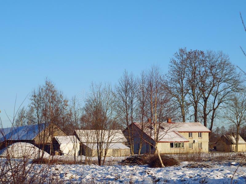 Landbouwbedrijf In De Winter Stock Foto's