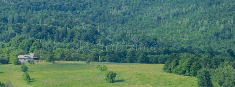 Landbouwbedrijf dichtbij Karpatisch bos royalty-vrije stock foto