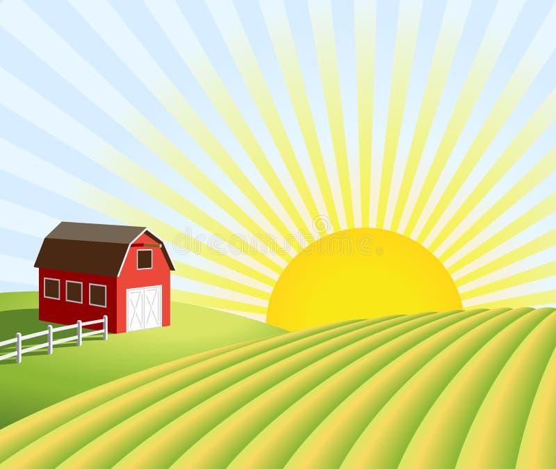 Landbouwbedrijf en gebieden bij zonsopgang royalty-vrije illustratie