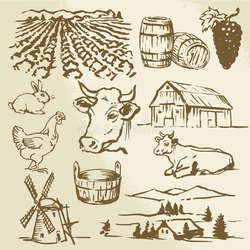 Landbouwbedrijf, koe, landbouw royalty-vrije illustratie