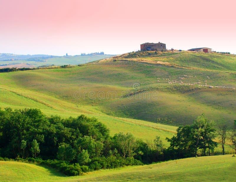Landbouwbedrijf in Toscanië stock foto's