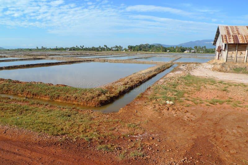 Landbouwbedrijf van overzees zout royalty-vrije stock fotografie