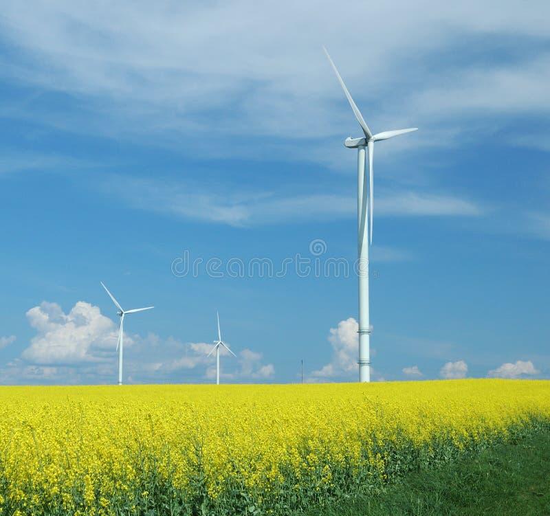 Landbouwbedrijf van windturbines dicht bij verkrachtingsgebied stock afbeeldingen
