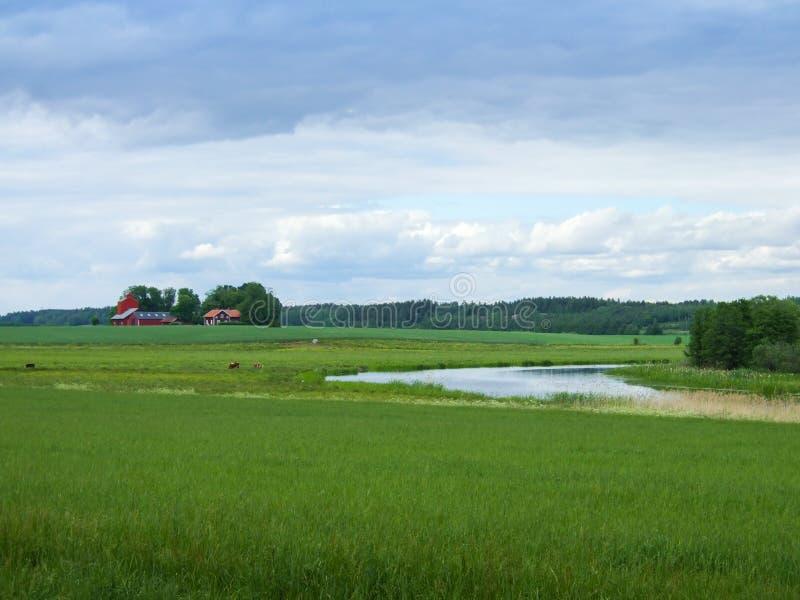 Landbouwbedrijf in Zweden royalty-vrije stock fotografie