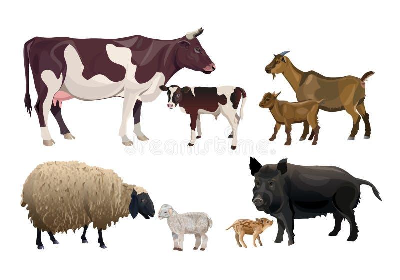 Landbouwbedrijfdieren en hun jonge geitjes royalty-vrije illustratie