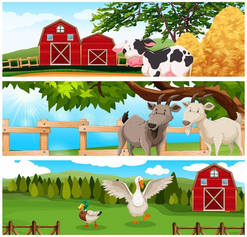 Landbouwbedrijfdieren op de landbouwgrond vector illustratie