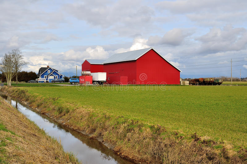 Landbouwbedrijfgebied in de lentetijd royalty-vrije stock fotografie