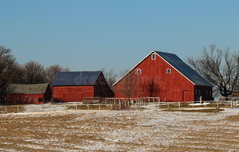 Landbouwbedrijfgebouwen stock afbeelding
